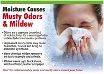musty odors and mildew